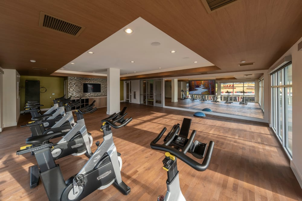 Well-equipped onsite fitness center at Carter in Scottsdale, Arizona