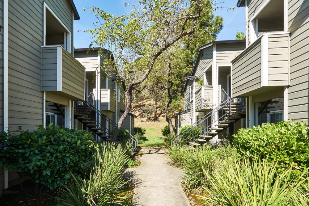Light-green exterior accented by the manicured landscape at Shadow Woods in Oakland, California