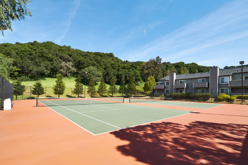 Spacious tennis court with a woodland view at Shadow Woods in Oakland, California