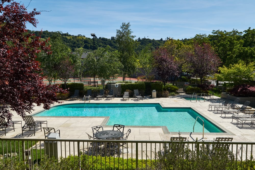 Beautiful resort-style swimming pool with sundeck and lounge chairs at Shadow Woods in Oakland, California