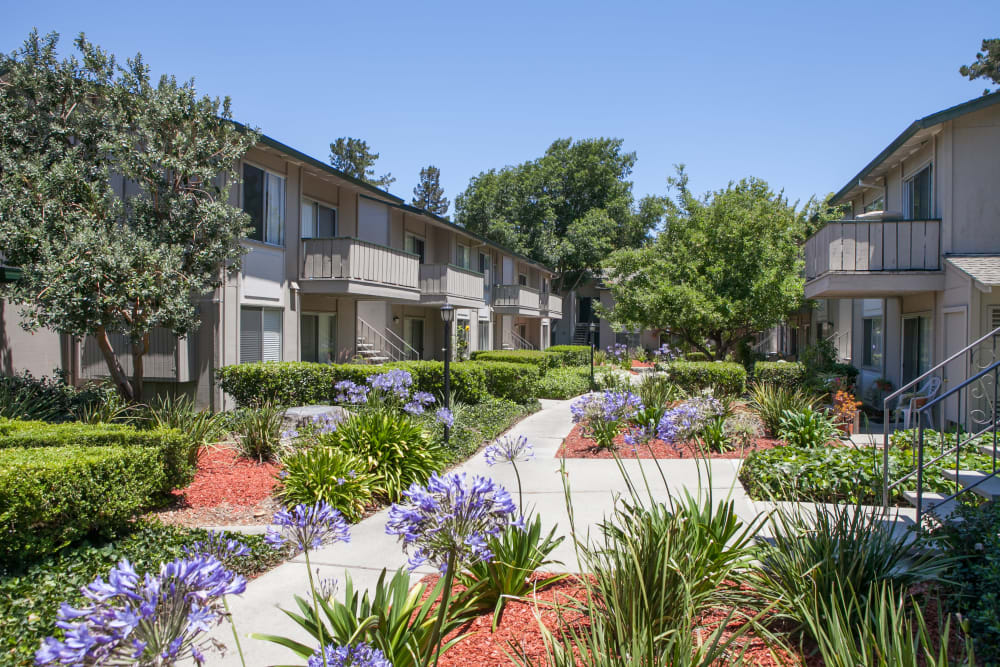 Beautiful landscaping at Appletree Apartments in Campbell, California