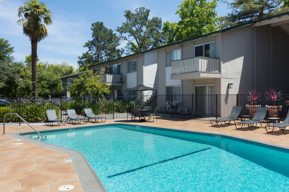 Resort-style swimming pool at Appletree Apartments in Campbell, California