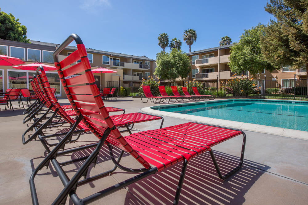 Lounge chairs next to Carriage House's swimming pool in Fremont, California