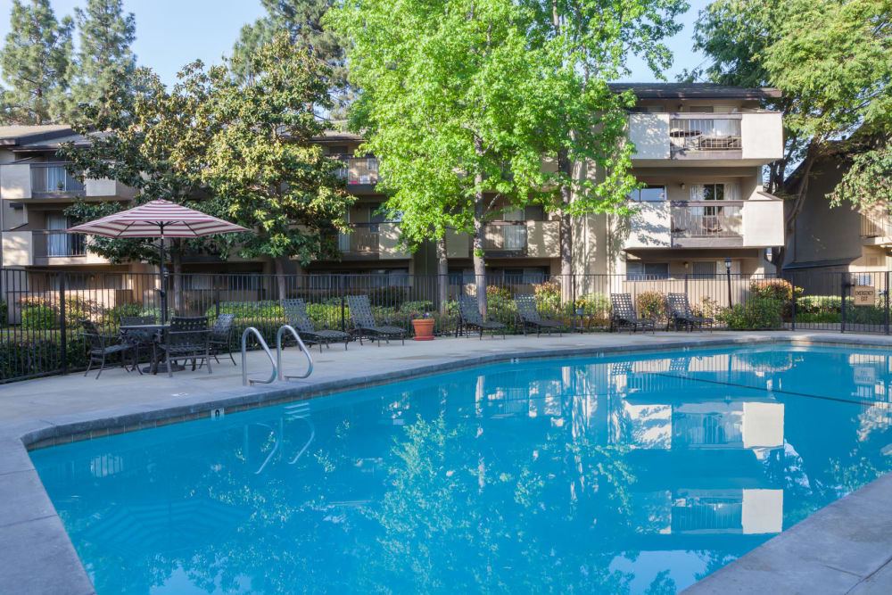 Resort-style swimming pool at Carrington Apartments in Fremont, California