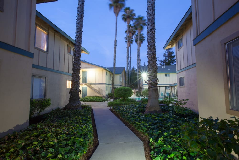 Walking path between apartment buildings at Cedartree Apartments in Santa Clara, California