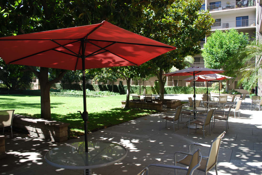 Outdoor patio area at Pasadena Highlands in Pasadena, California