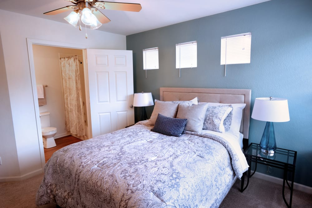 Accent wall in bedroom of model home at Cascade Falls Apartments in Akron, Ohio