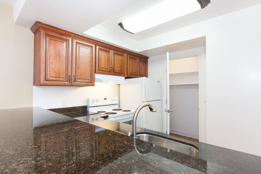 Kitchen with plenty of counter space at Normandy Park Apartments in Santa Clara, California