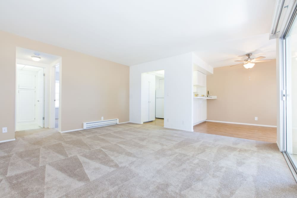 Large living room at Normandy Park Apartments in Santa Clara, California