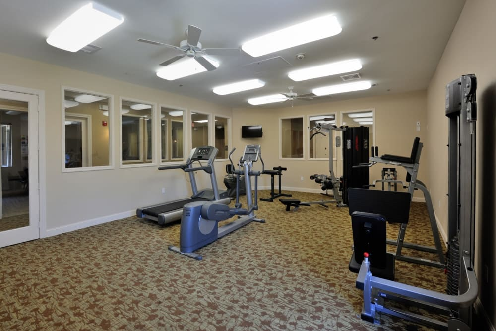 Exercise equipment in the gym at Clayton Oaks Living in Richmond, Texas