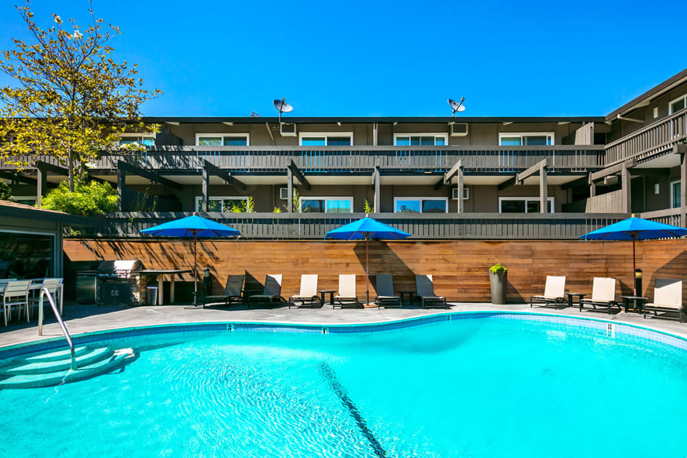 Sparkling swimming pool at 1038 on Second in Lafayette, California
