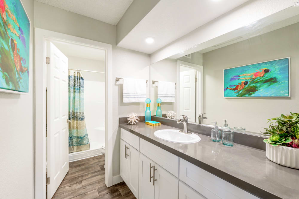 Bathroom model with blue accents and plant at Sonora at Alta Loma in Alta Loma, California