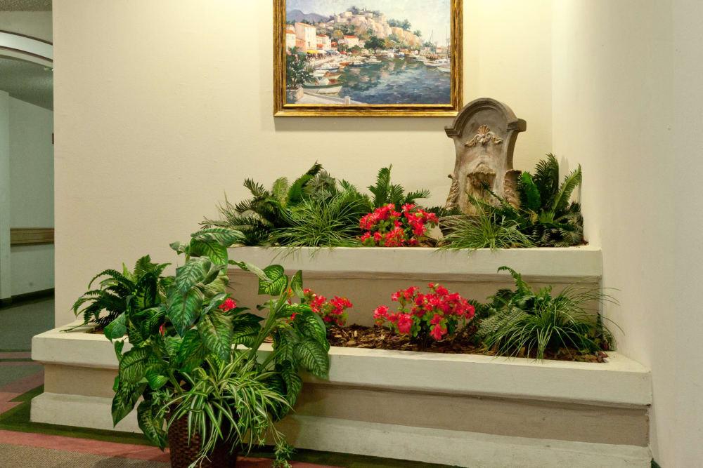 Small indoor garden at Carriage Inn Huntsville in Huntsville, Texas