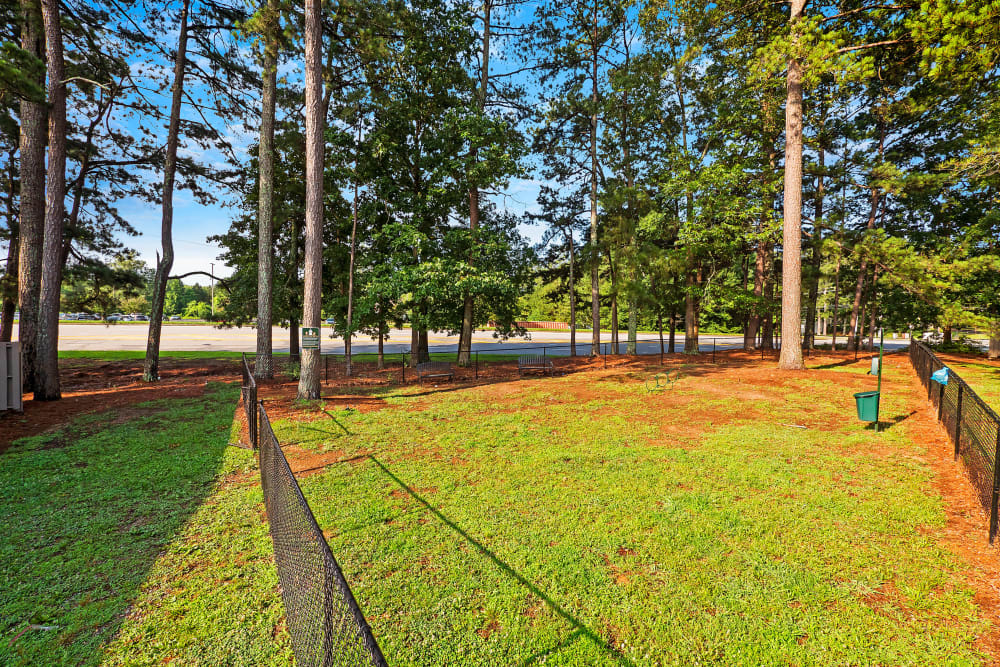 Dog park at The Grove at Six Hundred in Rome, Georgia