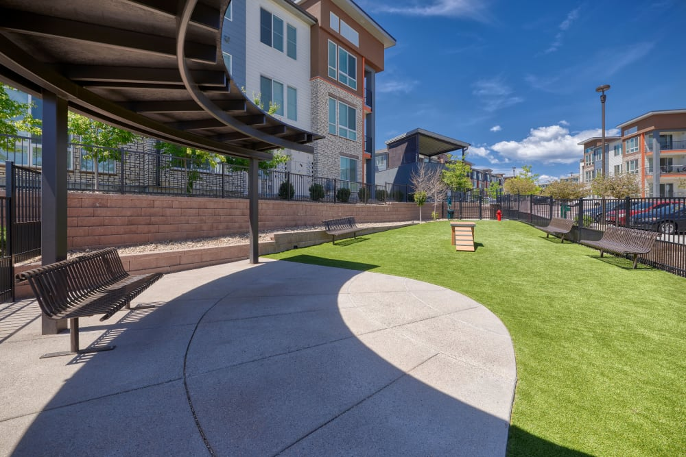 Off-leash dog park with artificial turf