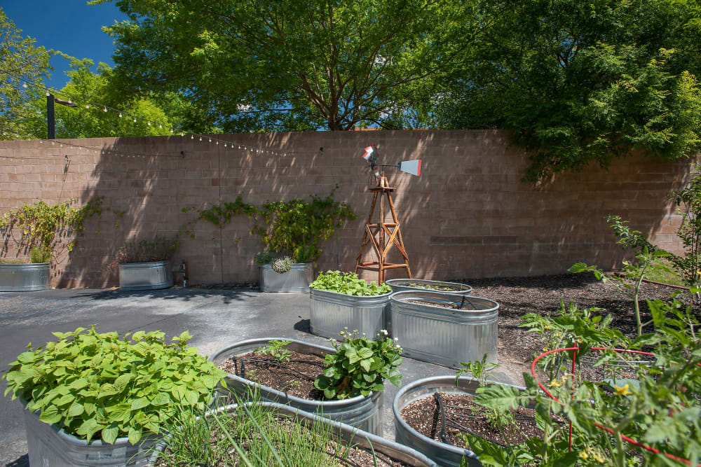 Community garden at Slate Creek Apartments in Roseville, California