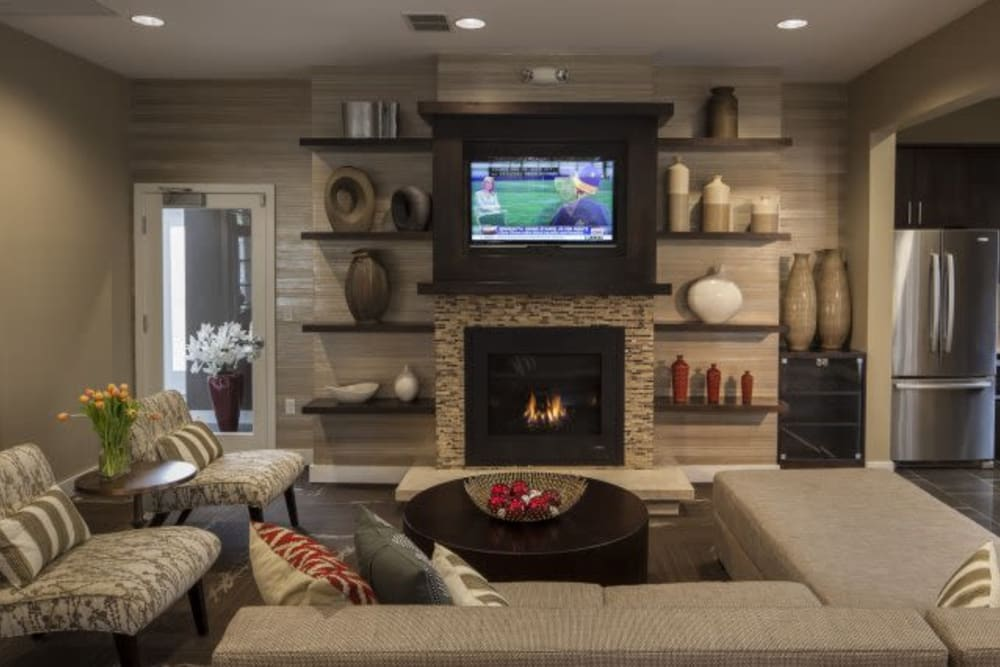 Community TV at The Reserve at Ballenger Creek Apartments in Frederick, Maryland