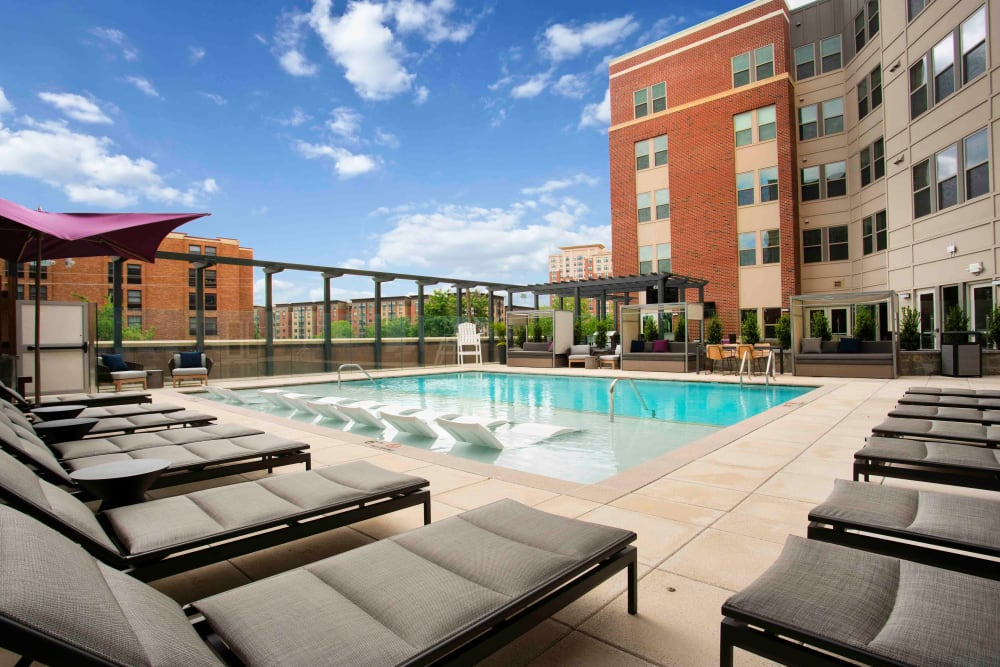 Stunning pool views at Alloy by Alta