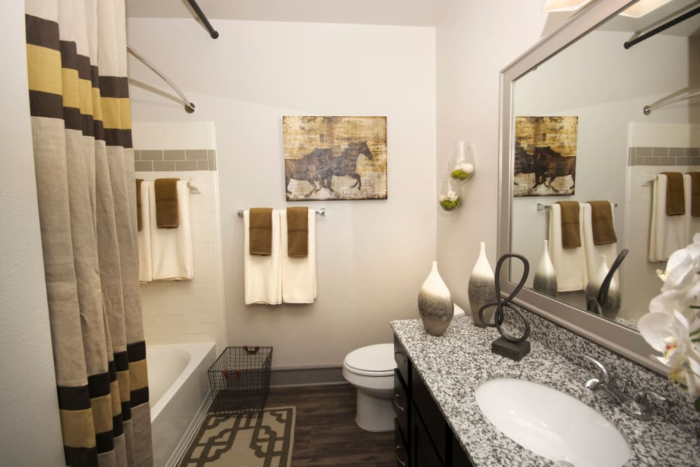 Master bathroom at The Sovereign in Fort Worth, Texas