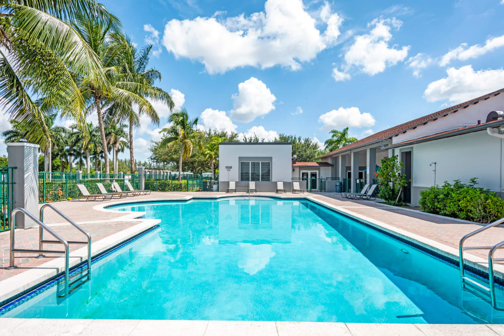 A luxury swimming pool at Cedar Grove Apartments in Miami Gardens, Florida