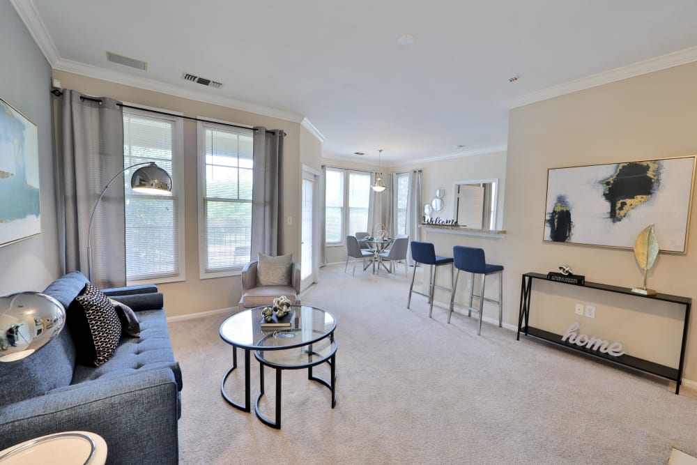 Beautiful Living Room at The Village at Potomac Falls Apartment Homes in Sterling, VA