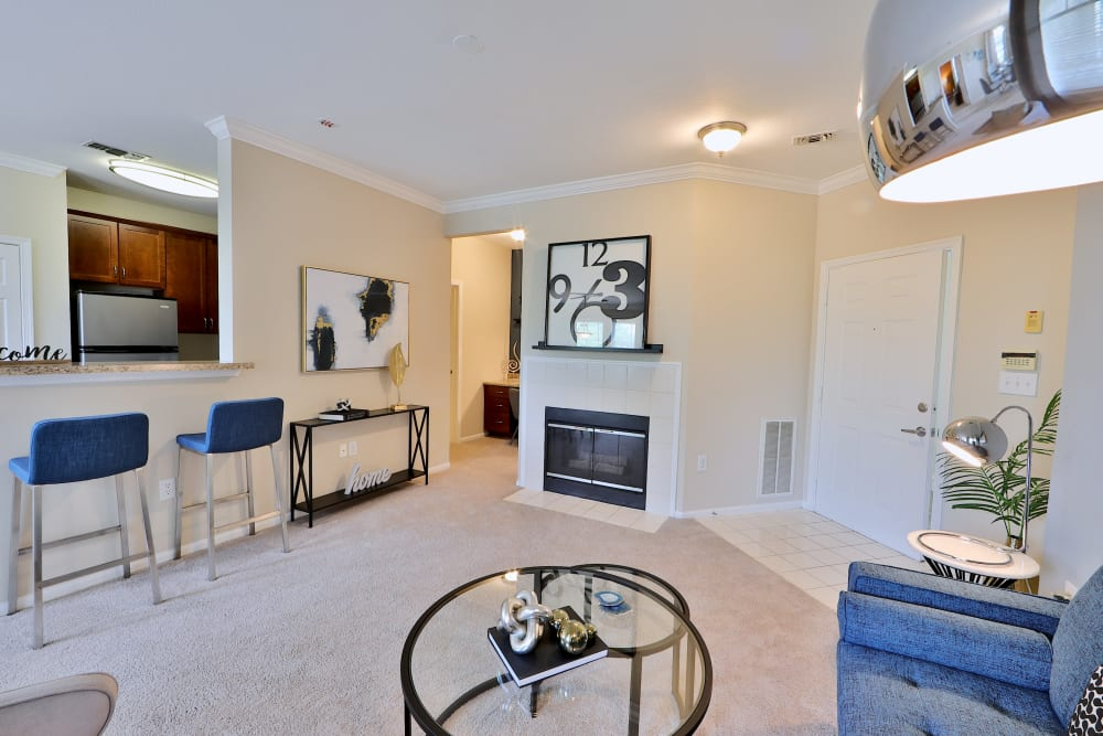 Living Room at Apartments in Sterling, Virginia