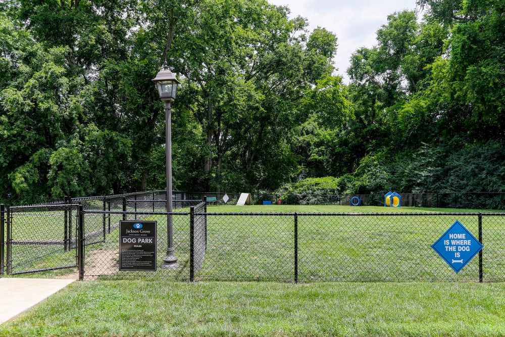 Enjoy Apartments with a Dog Park at Jackson Grove Apartment Homes