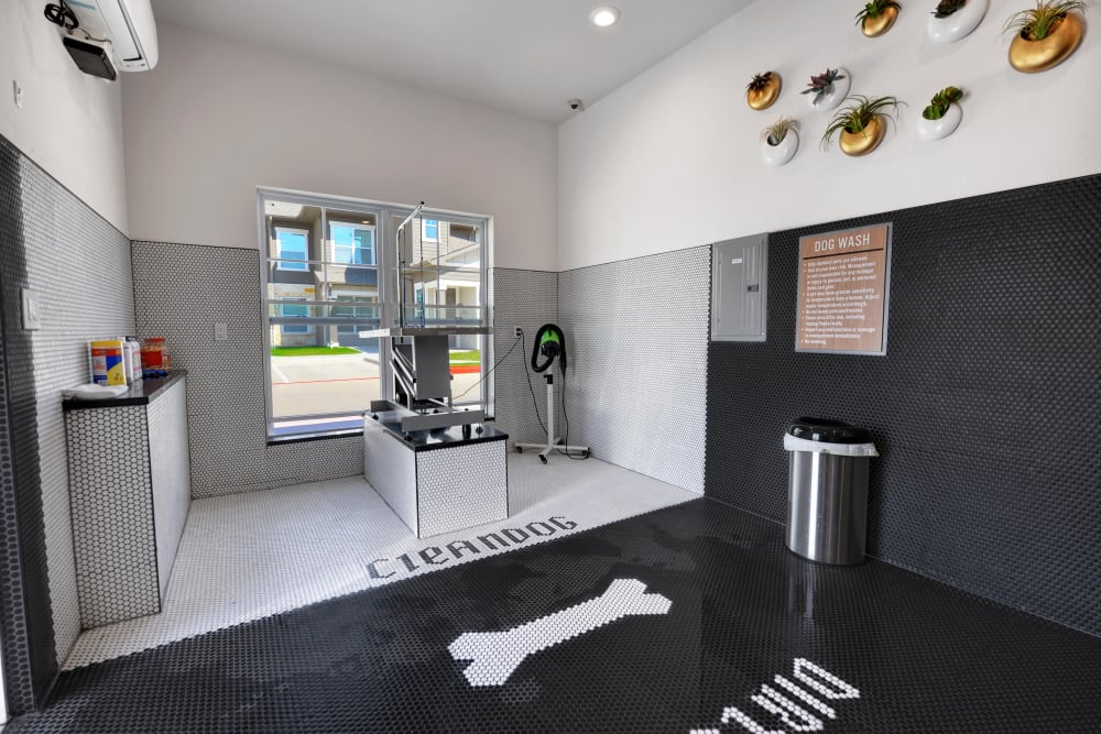 Dog grooming room available at Alta Tech Ridge in Austin, Texas