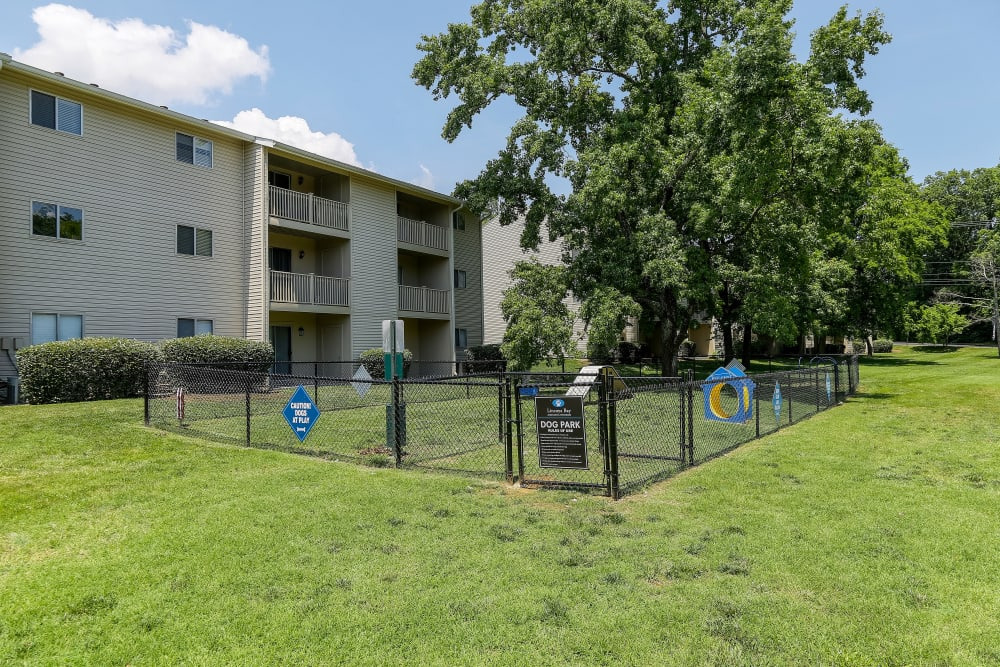 Enjoy Apartments with a Dog Park at Lincoya Bay Apartments & Townhomes