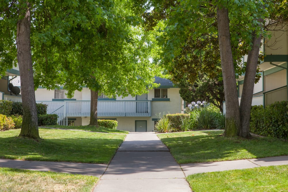 Walking paths at Oak Pointe Apartments in Fremont, California
