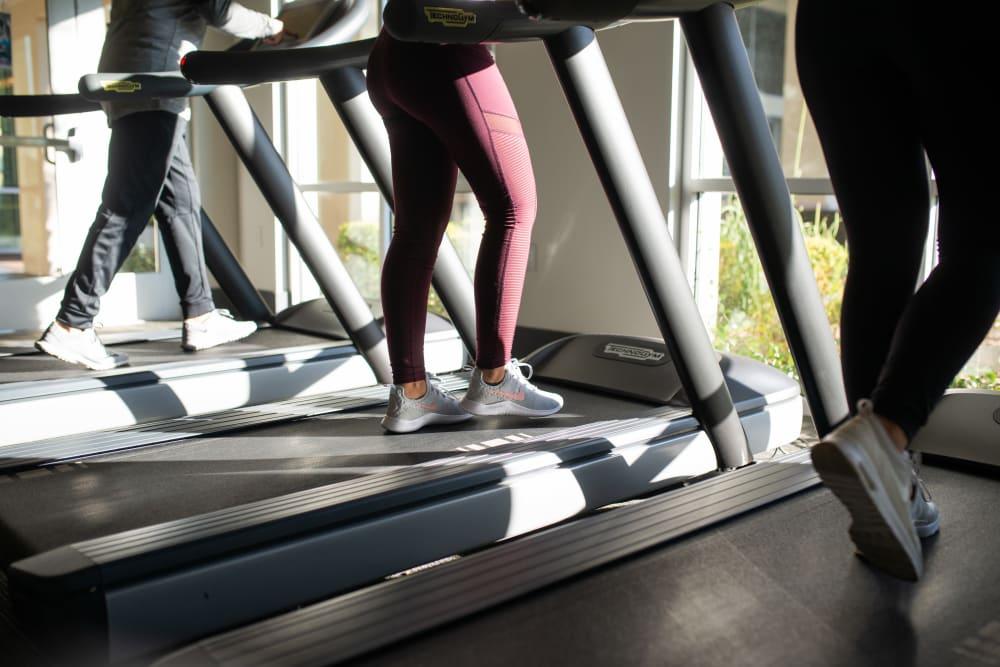 Residents using treadmills at BB Living at Val Vista in Gilbert, Arizona