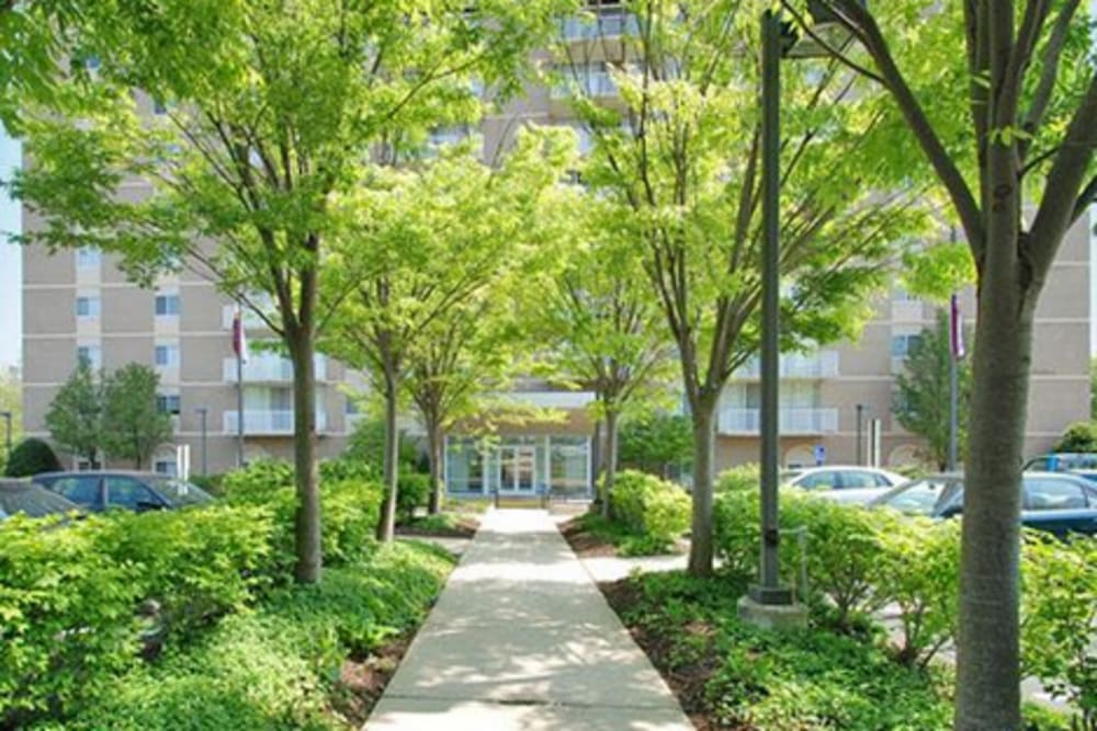A beautiful manicured walkway at Westwood Tower Apartments in Bethesda, Maryland