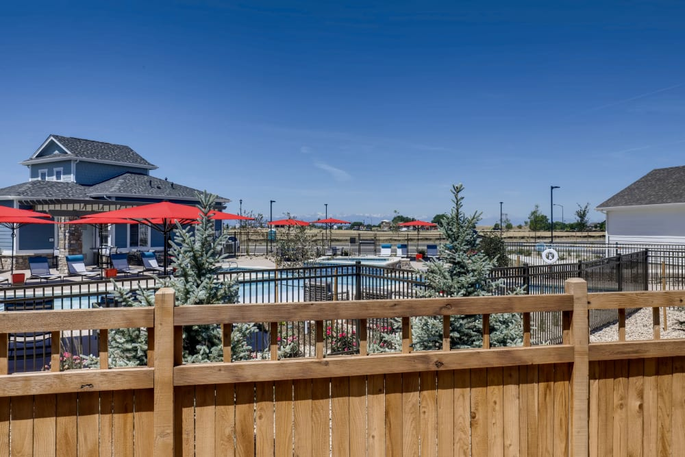 Pool area at Avilla Buffalo Run in Commerce City, Colorado
