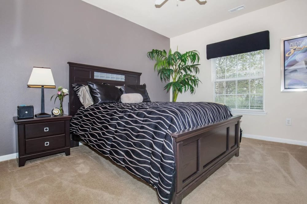 Large bedroom with ample space at Echo Ridge Apartments in Indianapolis, Indiana