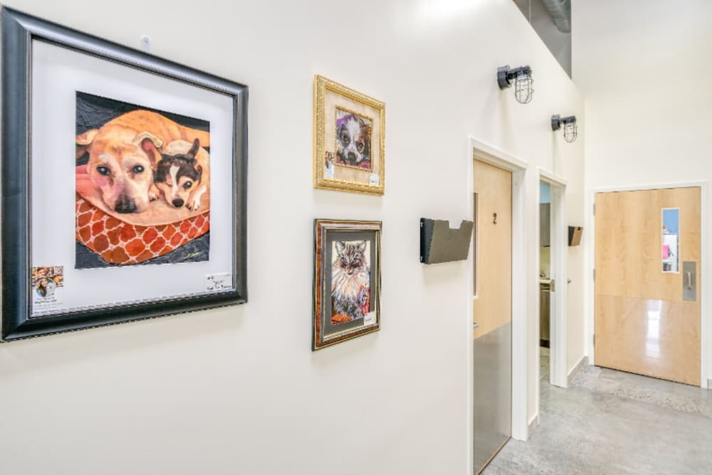 Hallway with artwork hanging on the walls at
