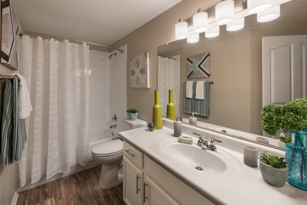 Spacious bathroom with modern decor at San Palmas in Chandler, Arizona
