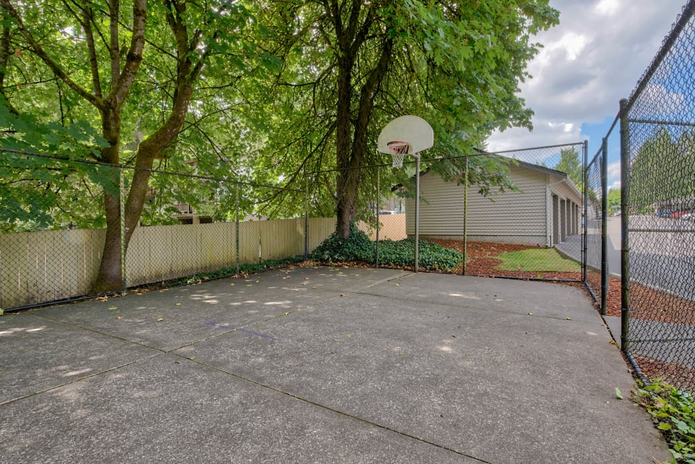 Arbor Square Apartments offers a Basketball Court in Olympia, Washington