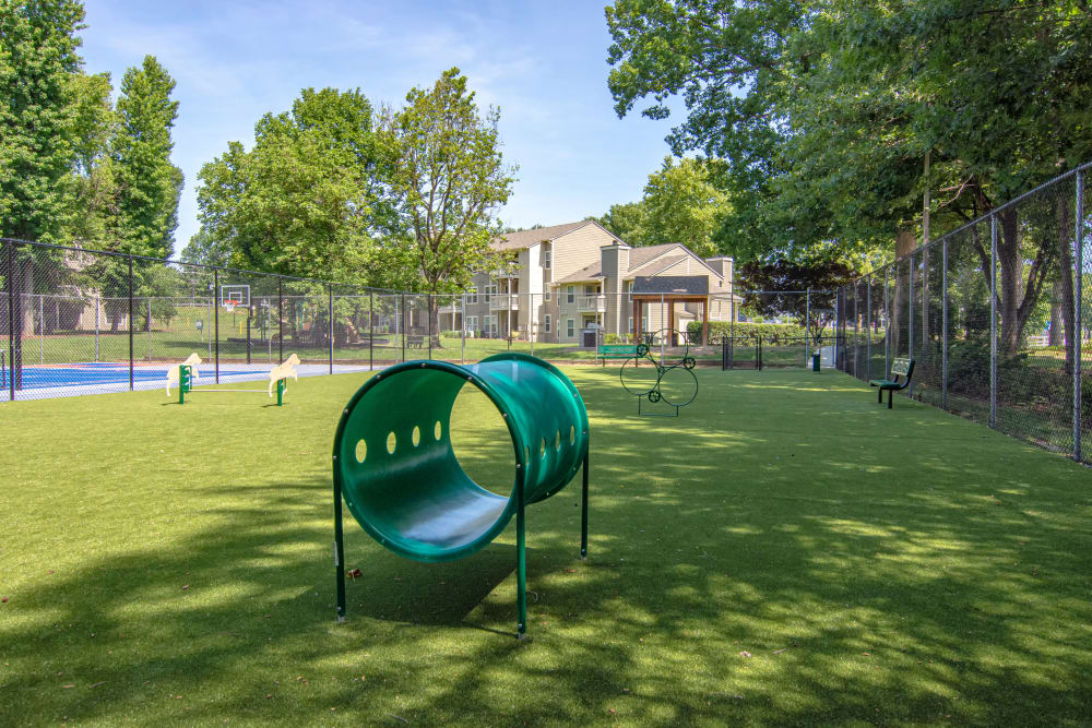 Dog Park at Hunter's Chase Apartments in Midlothian, Virginia