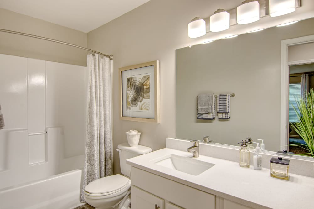 Beautiful Bathroom at Hunter's Chase Apartments in Midlothian, Virginia