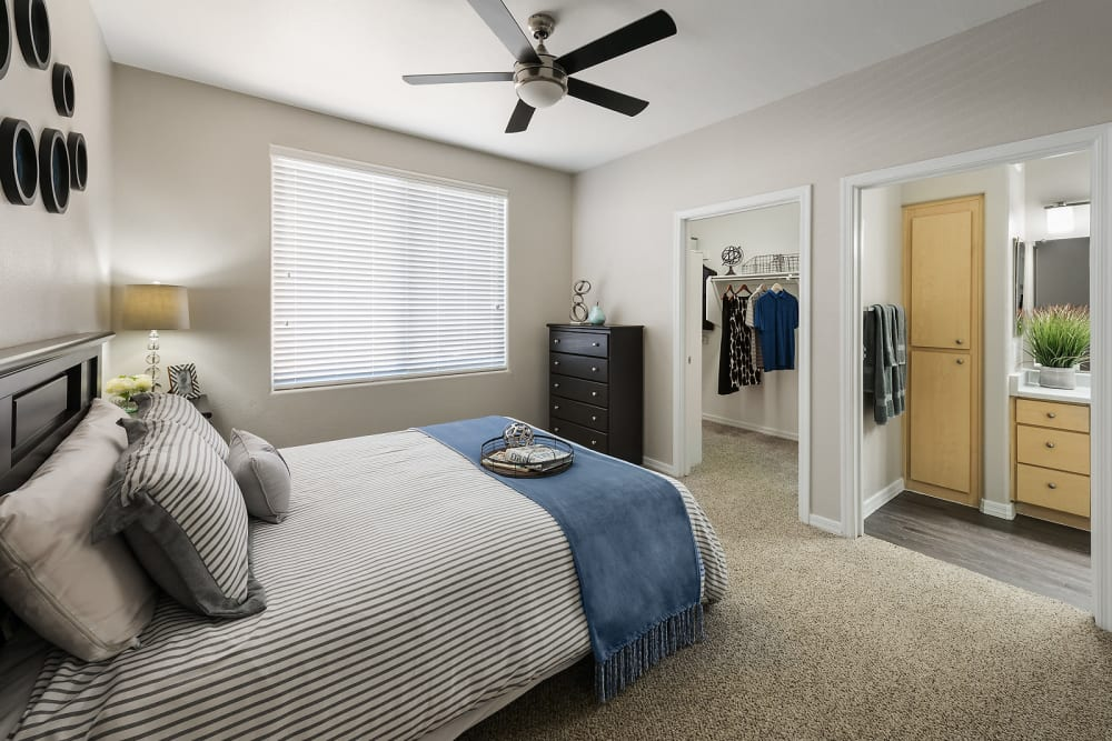 Large master bedroom with ceiling fan and beautiful furnishings in model home at Laguna at Arrowhead Ranch in Glendale, Arizona