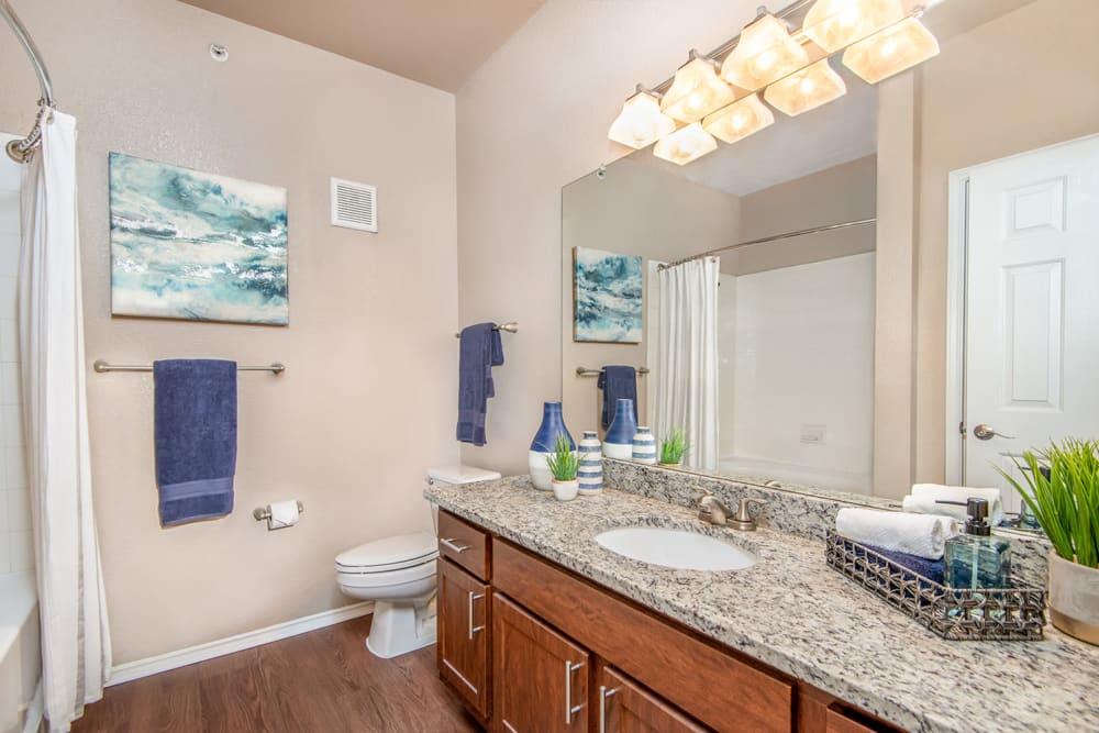 Bathroom at Ballantyne Apartments in Lewisville, Texas