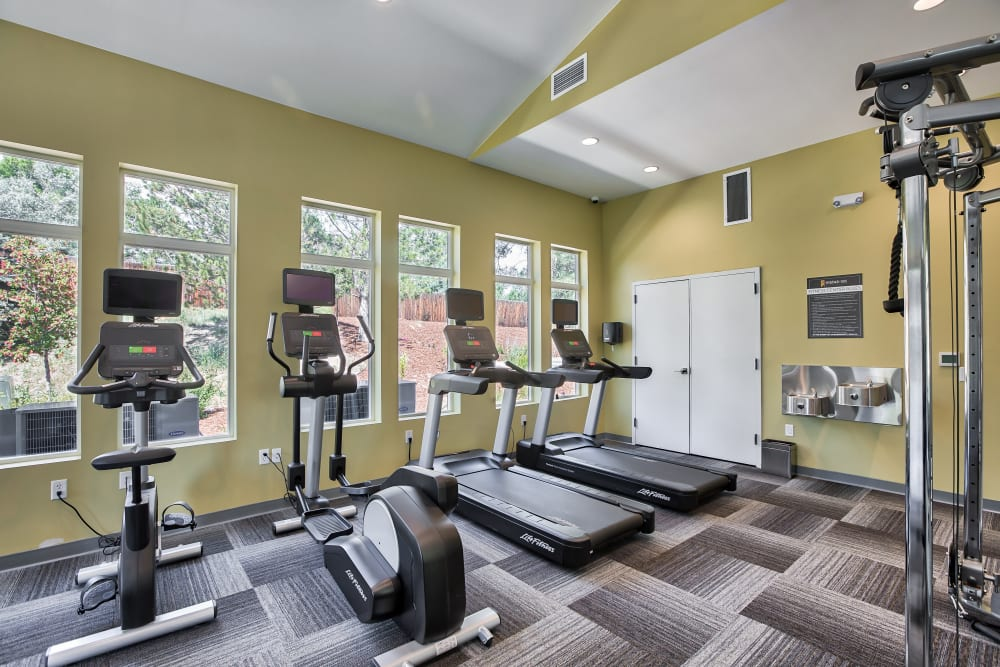 Enjoy Apartments with a Gym at Vistas at Stony Creek Apartments
