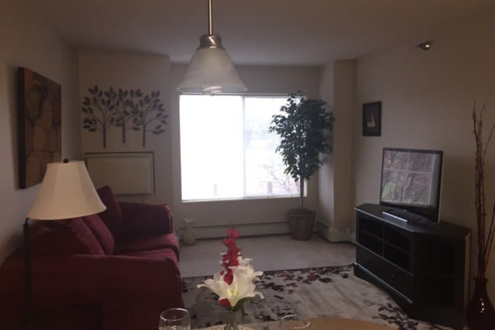 Spacious living room with plush carpeting at Parkway Gardens Senior Apartment Community in Saint Paul, Minnesota