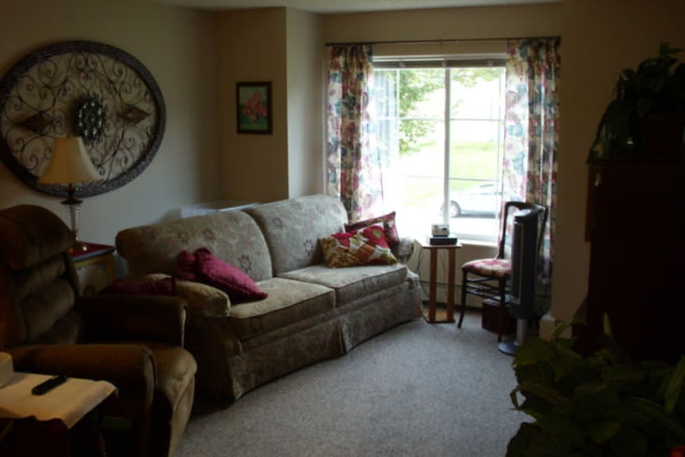 Spacious living room with a large window at Parkway Gardens Senior Apartment Community in Saint Paul, Minnesota