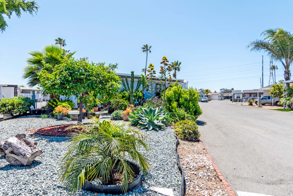 Landscaping around the community in Chula Vista, California at Brentwood