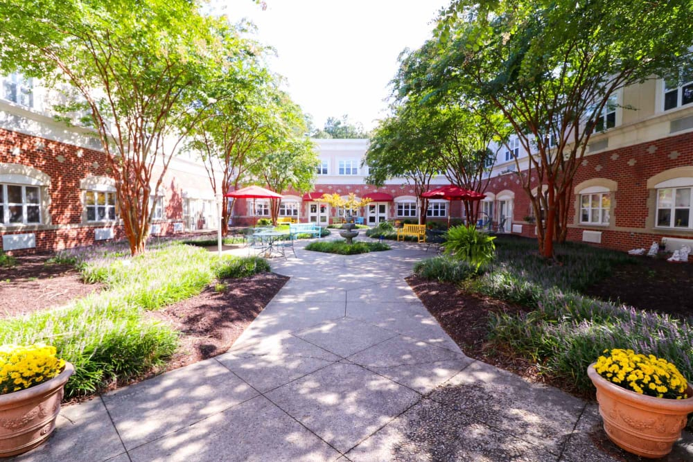 A paved walkway through the courtyard at Harmony at Ironbridge in Chester, Virginia