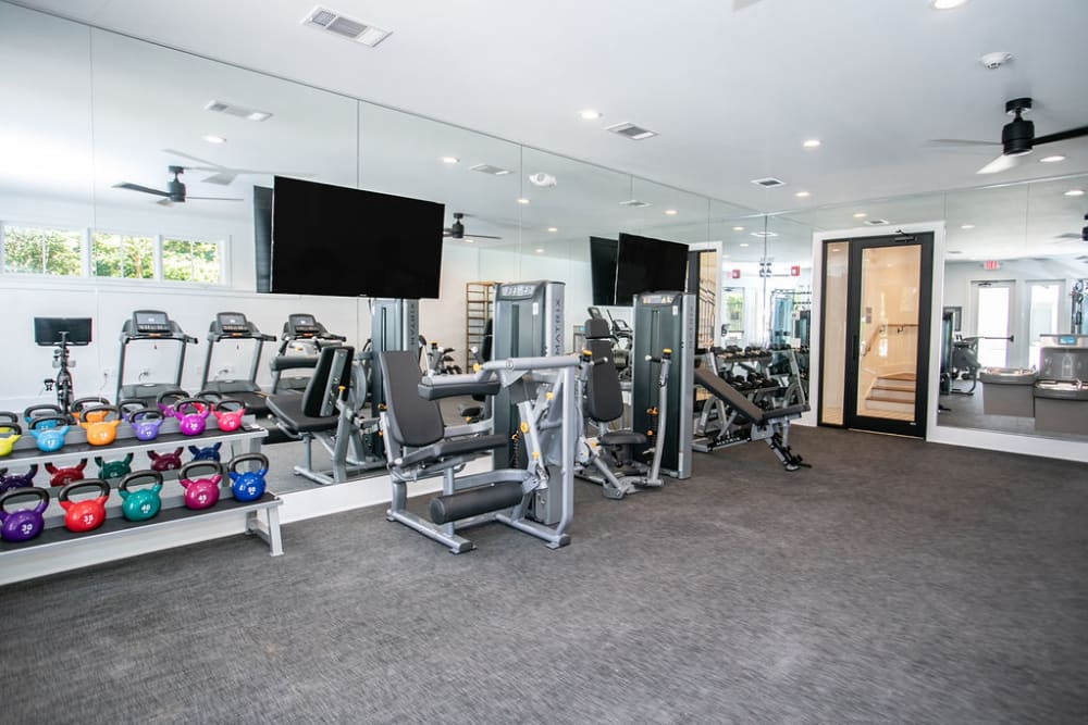 Weight Room at The Ashford Apartment Homes in Brookhaven, Georgia