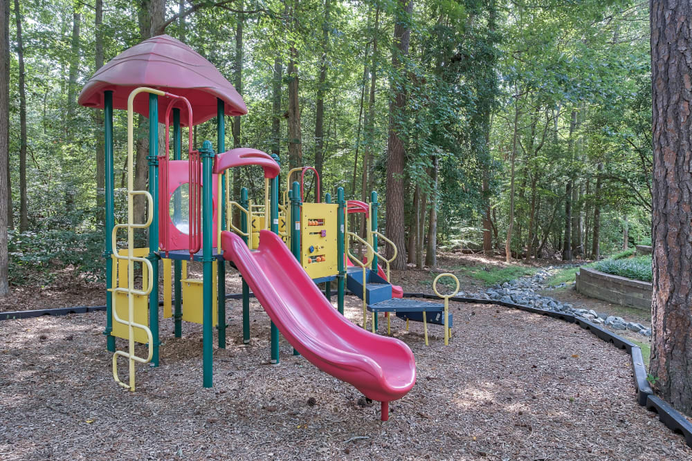 Playground at Woods of Williamsburg Apartments in Williamsburg, Virginia