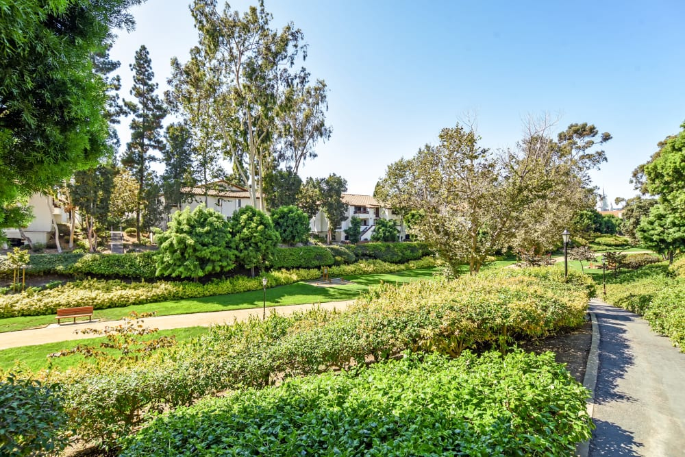 Our Apartments in San Diego, California offer a Walking Paths