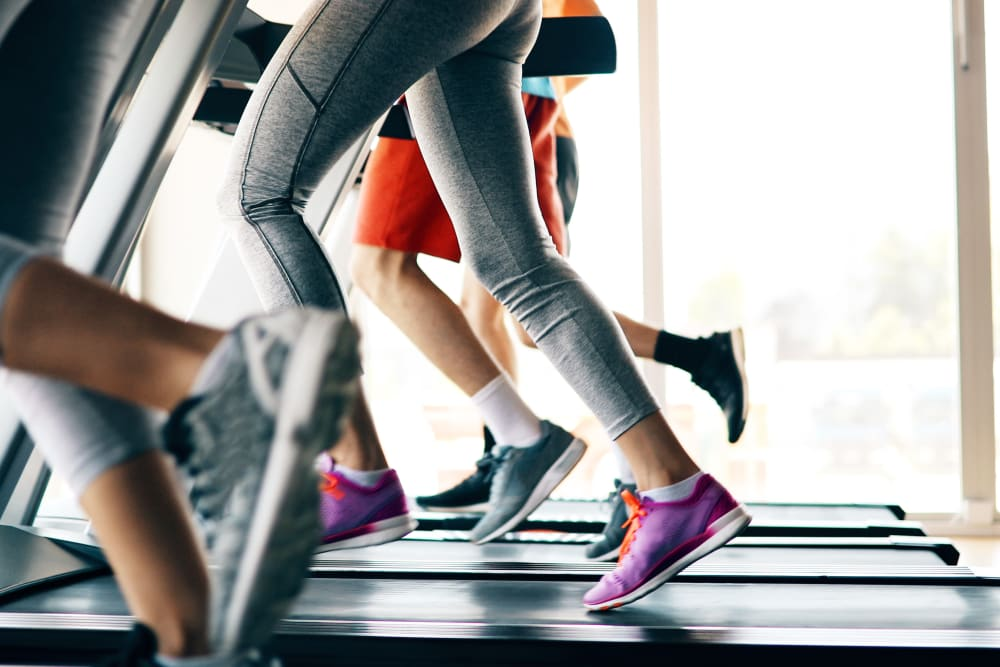 Residents running on treadmills in the gym at Autumn Chase in Ellington, Connecticut